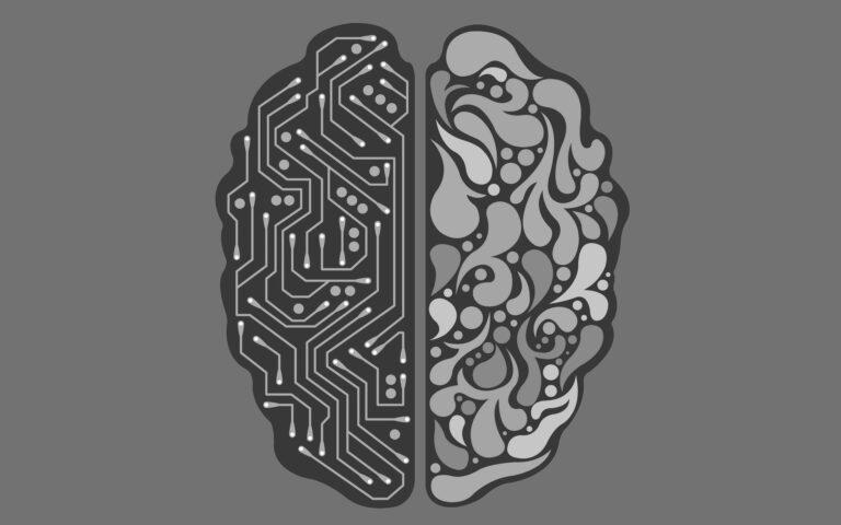 Nootropics effect the brain